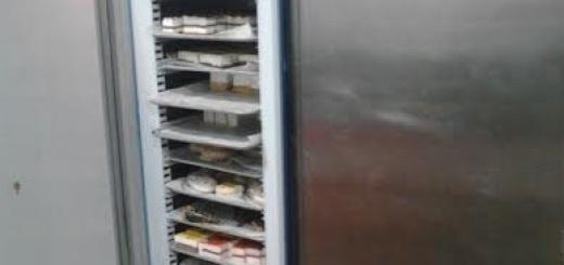 Armario mantenimiento congelados segunda mano