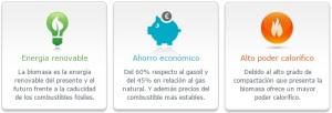 biomasa energia